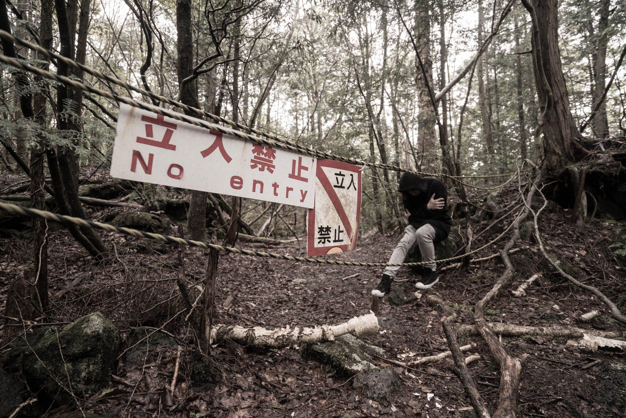 5 Hutan Terseram Di Dunia